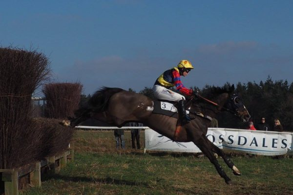 Fakenham Point to Point